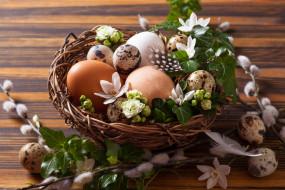 Пасха, гнездо, яйца, верба