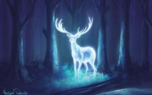 фэнтази, олень, лес, рога, арт, ночь