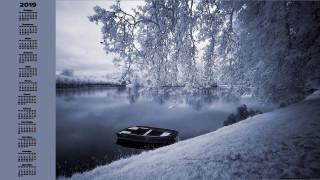 дерево, снег, водоем, лодка