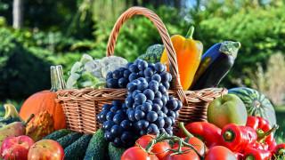 перец, огурцы, виноград