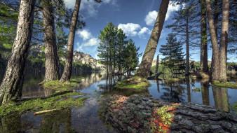 деревья, река, горы