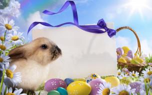 кролик, пасхальный, корзинка с яйцами
