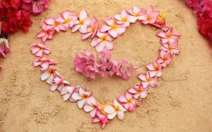 beach, pink, цветы, flowers, floral, сердце, плюмерия, пляж, romantic, песок, sand, love, heart, plumeria
