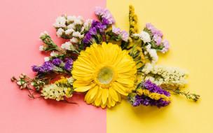 весна, colorful, композиция, bright, хризантемы, spring, flowers, цветы