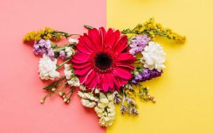композиция, colorful, весна, bright, хризантемы, spring, flowers, цветы