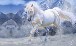 горы, зима, снег, конь, арт