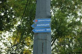три в одном, юмор и приколы, таблички, столб, деревья, небо
