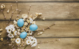 яйца, фон, пасха