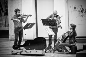 люди, мужчина, скрипка