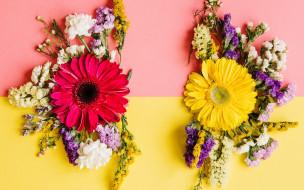 colorful, весна, композиция, bright, хризантемы, spring, flowers, цветы