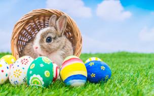 корзина, кролик, праздник, яйца крашенные, пасха