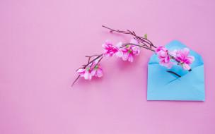 весна, розовые, blossom, цветы, spring, flowers, ветка, фон, конверт, letter, pink