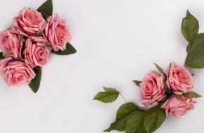 розовые, розы, цветы, roses, pink, композиция, flowers, букет