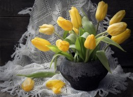 цветы, тюльпаны, платок, желтый