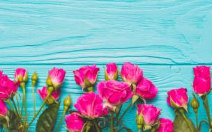 romantic, розы, flowers, цветы, бутоны, розовые, fresh, roses, wood, pink
