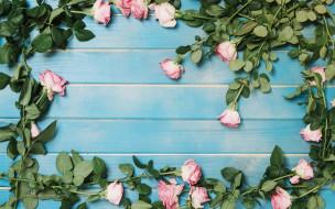 fresh, roses, розовые, flowers, tender, розы, romantic, pink, wood, бутоны, цветы