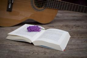 книга, гитара