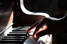 музыка, -музыкальные инструменты, рука, клавиши