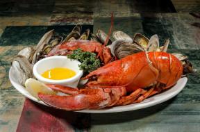 обои для рабочего стола 1920x1271 еда, рыба,  морепродукты,  суши,  роллы, лобстер
