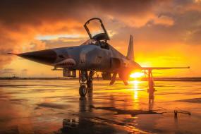 многоцелевой истребитель, легкий, northrop f5 freedom fighter, tiger two