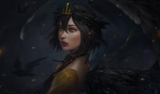 взгляд, арт, крылья, девушка, птицы