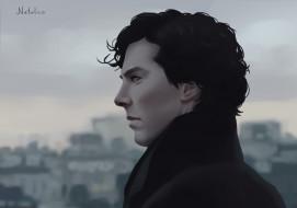 Sherlock Holmes, Benedict Cumberbatch, Sherlock, by natalico