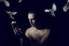 мужчины, - unsort, человек, фон, голуби