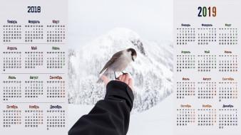 снег, птица, рука