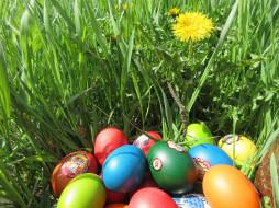 весна 2018, яйца, трава