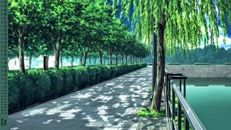 деревья, вода