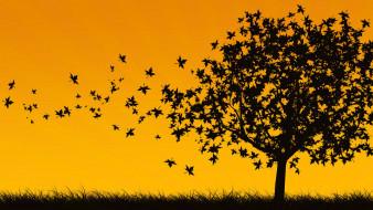 трава, силуэт, листья, осень, дерево, ветер
