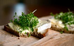 кресс, хлеб, сыр