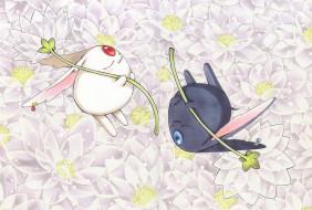 аниме, tsubasa reservoir chronicles, белый, цветы, черный, существа