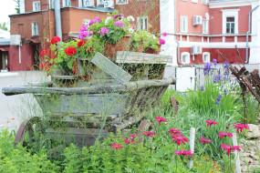 цветы, трава, телега