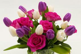 цветы, букеты,  композиции, тюльпаны, розы