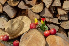 яблоки, тюльпаны, шляпа