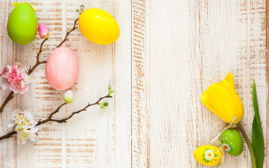 праздничные, пасха, цветы, tulips, blossom, весна, flowers, wood, eggs, decoration, ветки, happy, apple, spring, яйца, крашеные, easter, тюльпаны