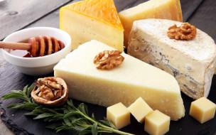 ассорти, мед, сыр, орехи