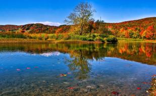 холмы, деревья, осень, озеро, берег