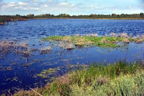 природа, реки, озера, вода
