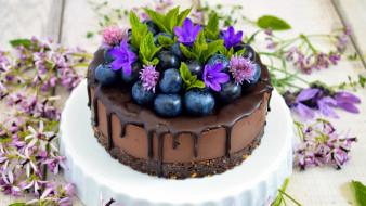 торт, черника, глазурь