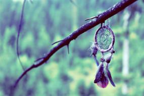 ветка, ловец снов, плетение, перья
