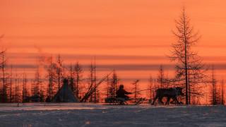 зима, упряжка, оленевод, олени, Север, небо, закат, снег, деревья, юрта