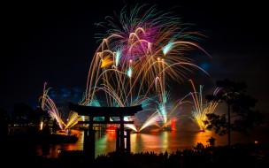 night, Asia, new year, pines, torii, fireworks, lights