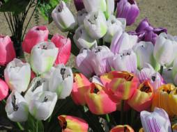 разное, ремесла,  поделки,  рукоделие, весна, 2018, исскуственные, цветы