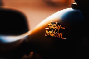 harley davidson, харлей дэвидсон, чоппер, логотип, bike, logo