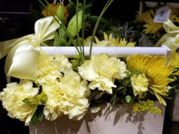хризантемы, гвоздика