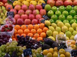 виноград, яблоки, еда, апельсины, лимоны