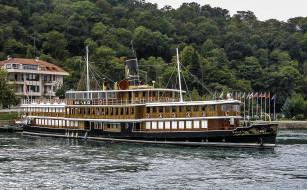 halas 71, корабли, пароходы, пароход