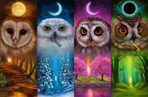 луна, совы, ключи, Хранители ключей